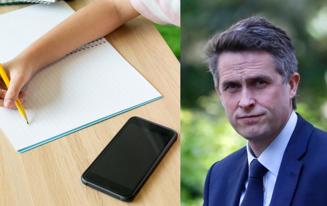 """Mr Williamson said mobile phone distract from """"exercise and good old-fashioned play"""" (Photo: Shutterstock/Getty Images)"""