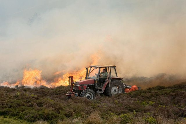 2019 saw the highest number of wildfires in the UK since records began.