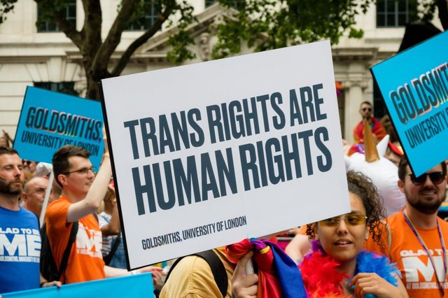 The process to obtain a gender recognition certificate is 'invasive' and 'inappropriate' according to trans rights groups, despite the fee to apply for one being cut significantly (Photo: Shutterstock)