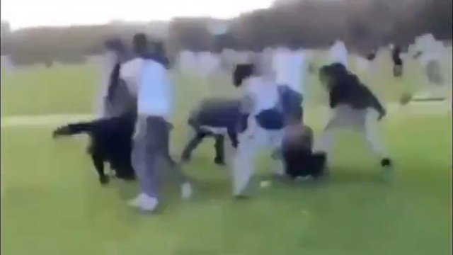 Sunbathers were left in shock as a gang set upon a teenager in Hyde Park on June 1 (image: social media)