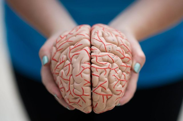 Parkinson's disease is a neurodegenerative disorder which impacts parts of the brain (Getty Images)
