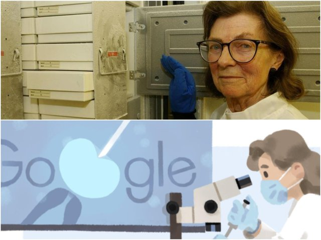 Dame Anne McLaren was an innovative scientist best known for her research on the development of embryos (Photo: PA and Google)