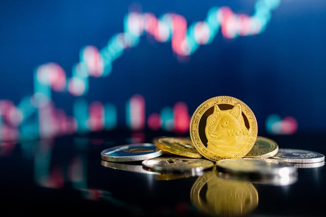 Cryptocurrency Shiba Inu is the latest digital token to attract interest from investors. (Pic: Shutterstock)