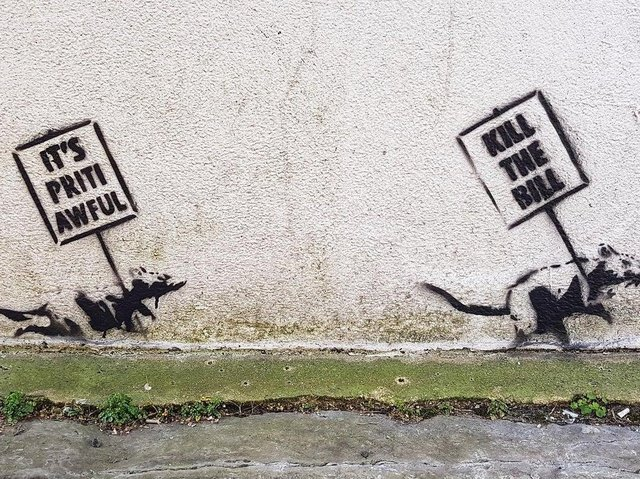 Two stenciled rats holding protest signs. Picture courtesy of Walter Francisco
